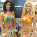 Our Hawaiian girls at Volvo car launch