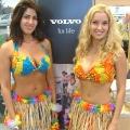 Our Hawaiian girls at Volvo car launch