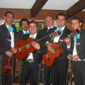 Flamenco band